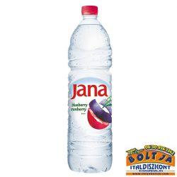 Jana Vörösáfonya-Kékáfonya 1,5l